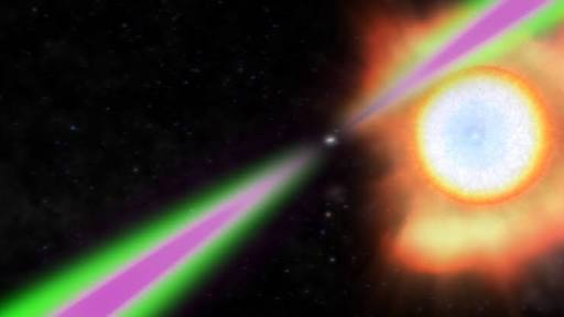You are currently viewing The First Gamma-Ray Pulsar Confirmed by the People